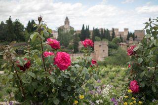 Andalusia2018_498_Granada&Alhambra