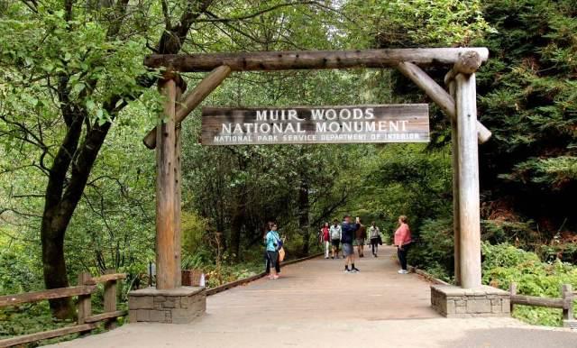 Muir Woods National