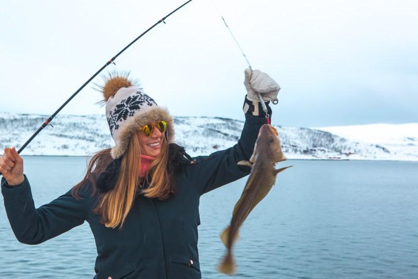 Arctic Sailing Safari tromso