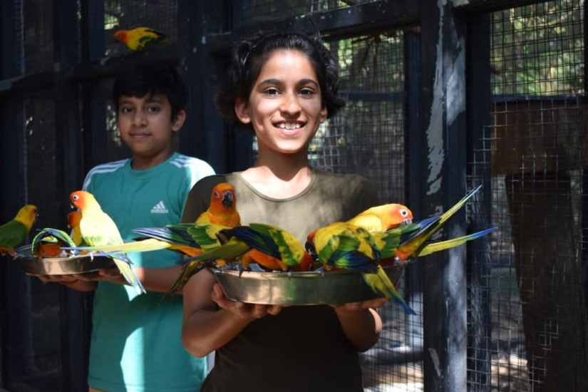 kids are playing with birds at Essel World Bird Park