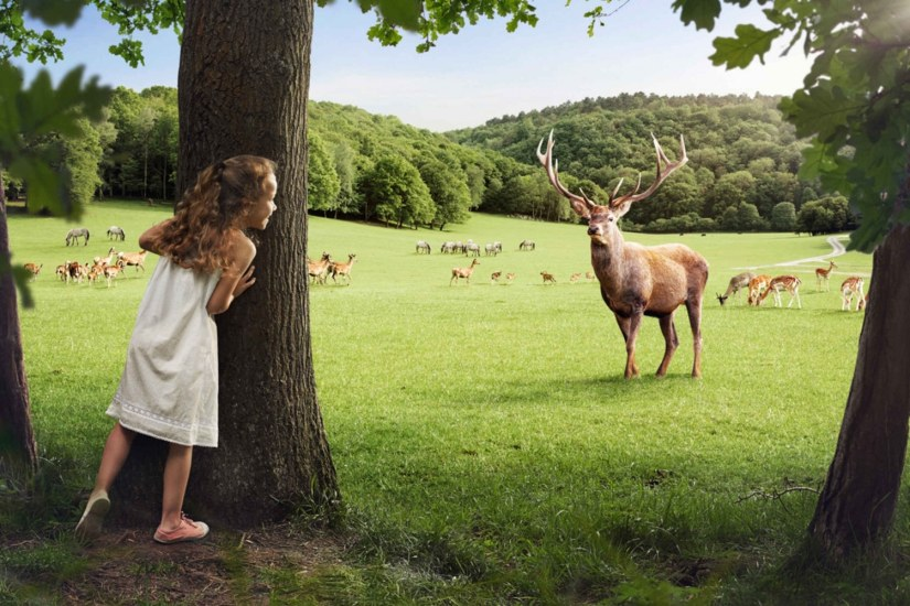 a girl are looking at the reindeer