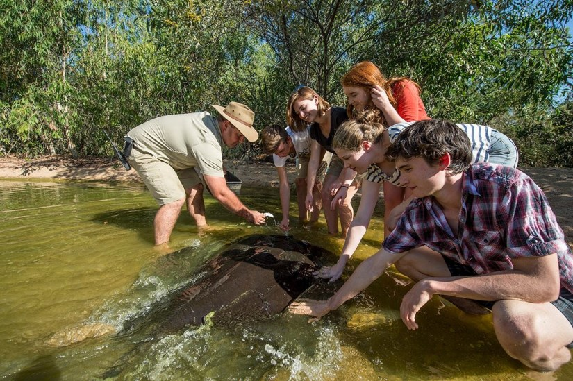 people are touching a fish at territory wildlife park