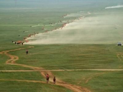 Horse racing Nadaam