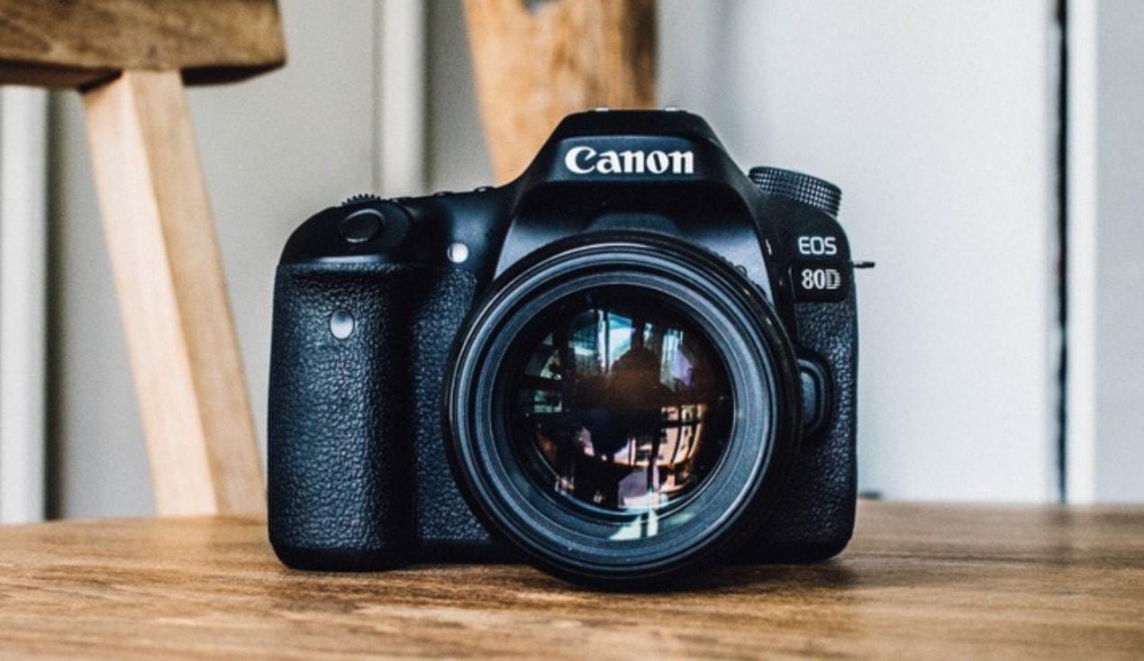 Canon EOS 80D review safari
