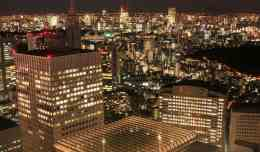 The view from the Tokyo Metropolitan Government Office observation deck.