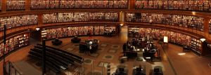 10 Best Public Libraries In Chicago