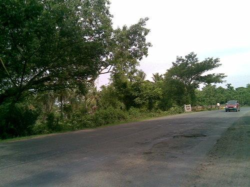 Mayapur: Road Trips from Kolkata