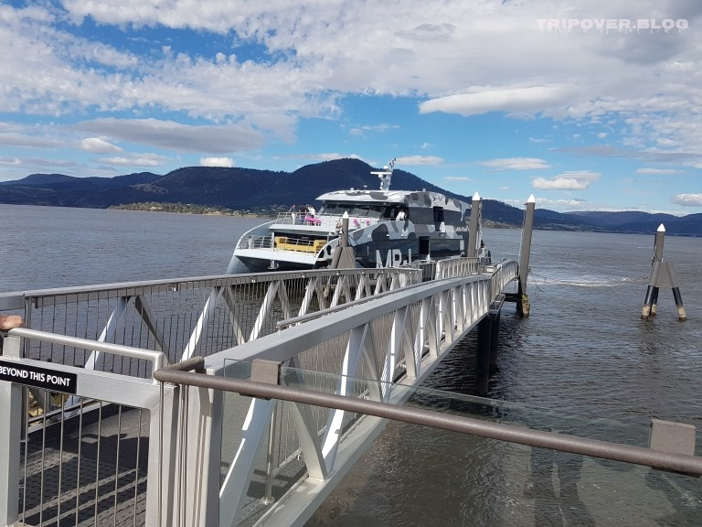 Mona Ferry flying into the dock