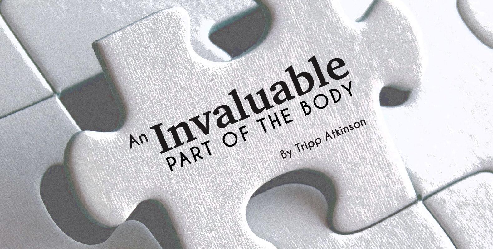 Tripp Atkinson Invaluable Header
