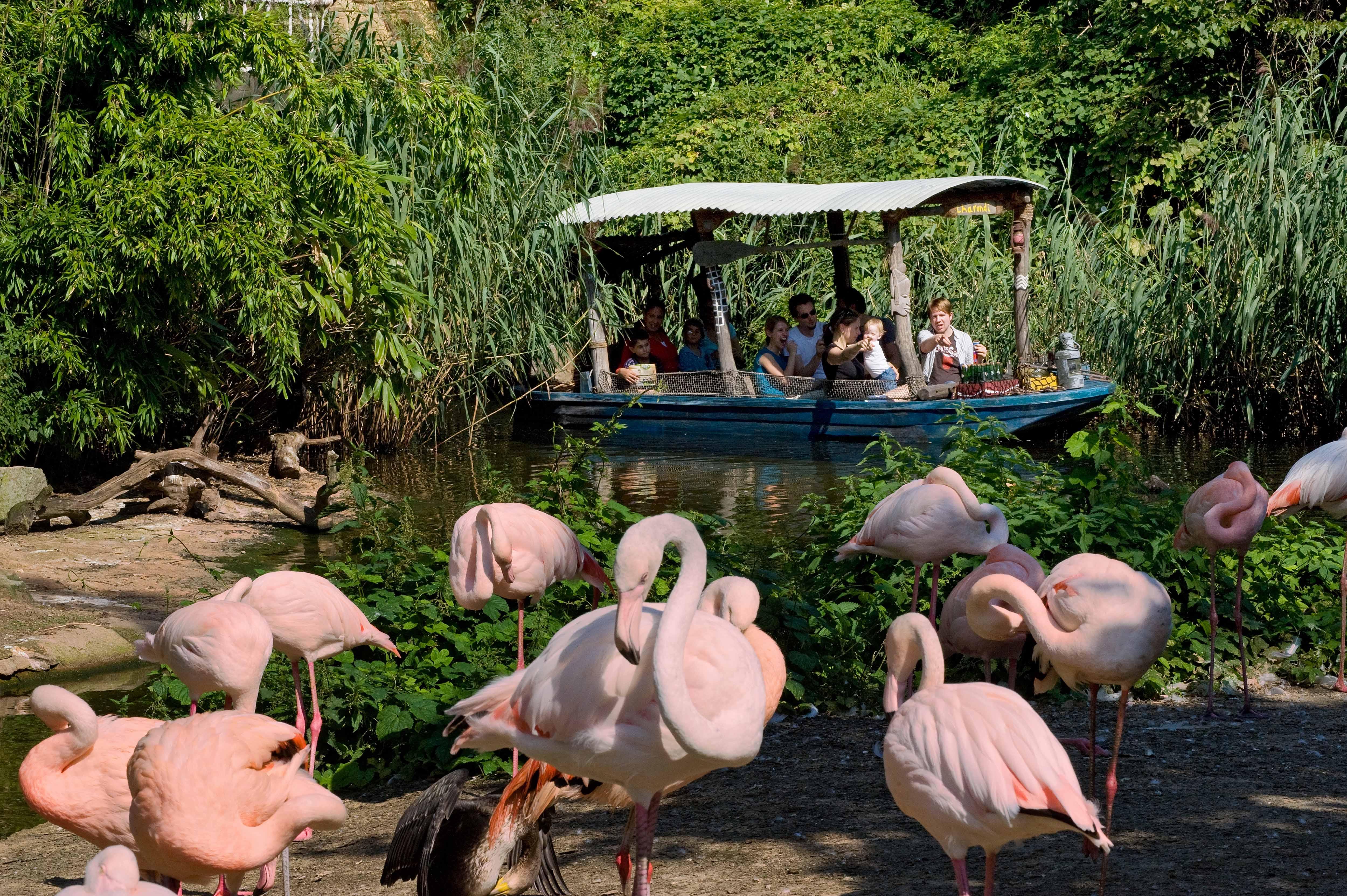 Erlebnis-Zoo Hannover, Themenbereich Afrika mit Sambesi-Bootsfahrt