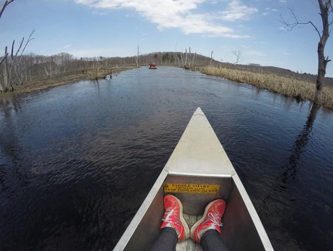 Chelsea & Kinsey canoeing