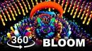 360 Bloom VR