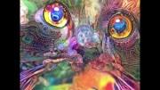 Abstract Catnip Dream