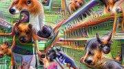 Pouff – Grocery Trip