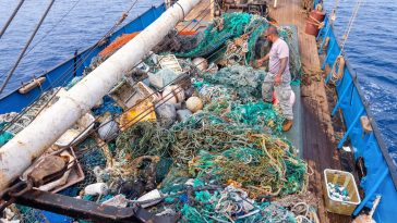 An Ocean Cleanup Crew Just Collected a Record Amount of Ocean Plastic From the GPGP