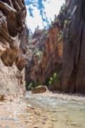 20150626 - Canyonland Nation Park-345