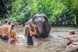 Mondulkiri Project - Cambodia