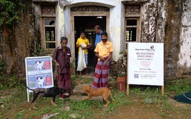 Neutering Program of the Dog Care Clinic