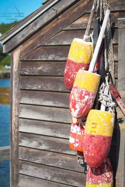 boothbay-lobster-buoy-trip