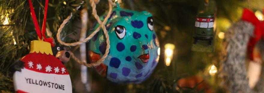 Trip Christmas Ornaments