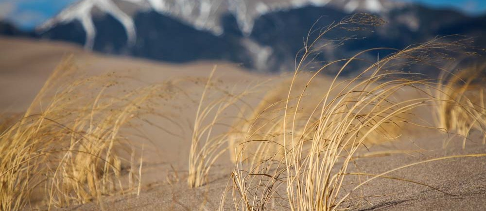 Great Sand Dunes National Park trip