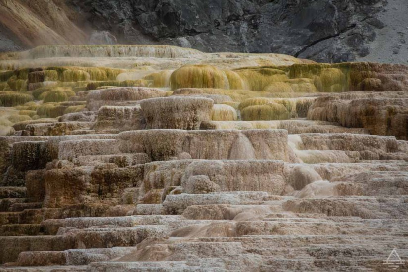 Yellowstone National Park Mammoth Hot Springs-10 trip