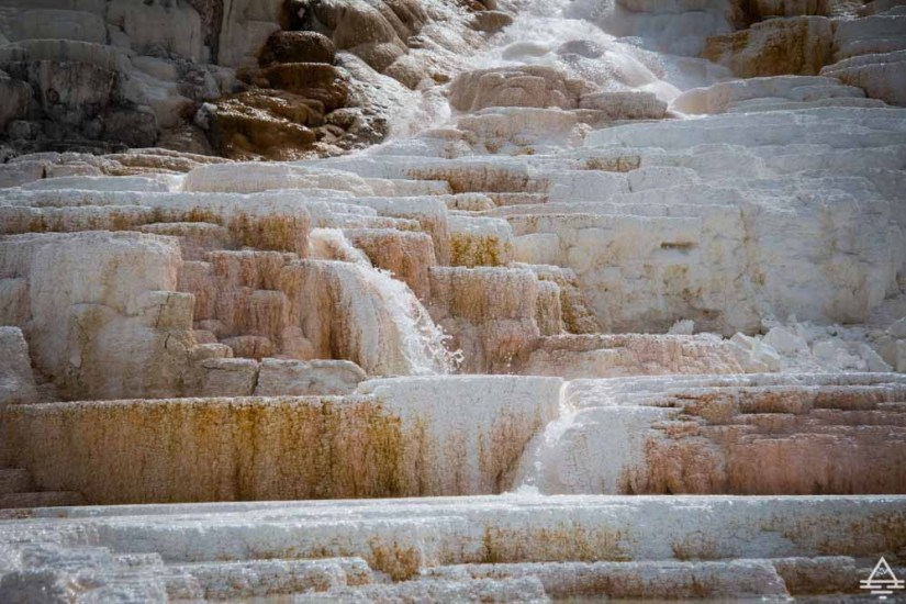 Yellowstone National Park Mammoth Hot Springs-3 trip