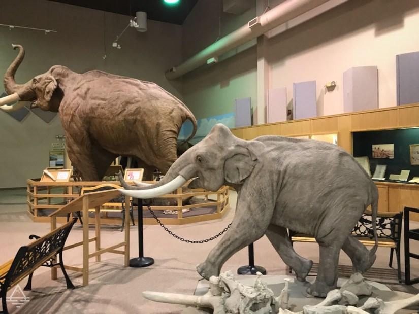 Hot Springs Mammoth Site Museum