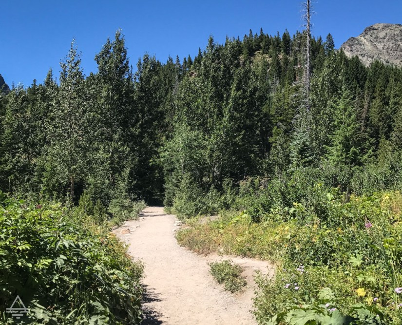 Glacier Running Eagle Falls Trail
