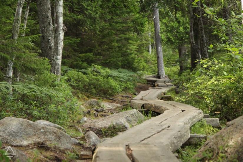 Acadia's Jordan Pond Path Wood Planks