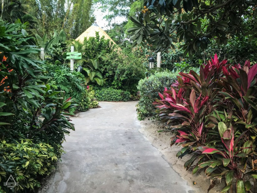 Lush vegetation and pathway at Discovery Cove Orlando.