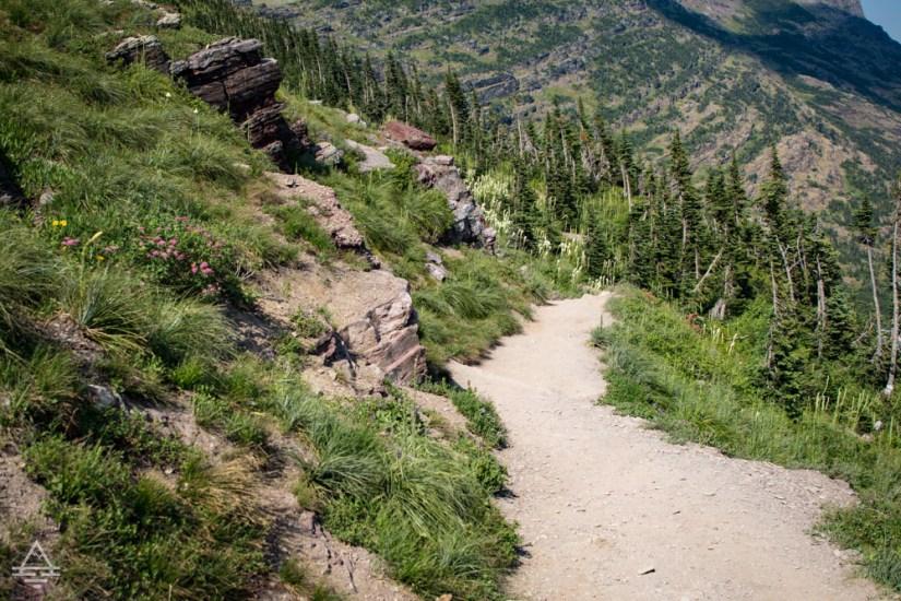 Grinnell Glacier Hiking Trail in Glacier National Park