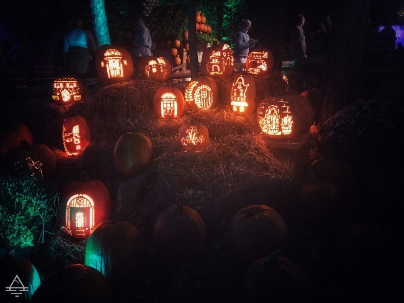 Grouping of Carved Pumpkins at Silver Dollar City Pumpkin Nights