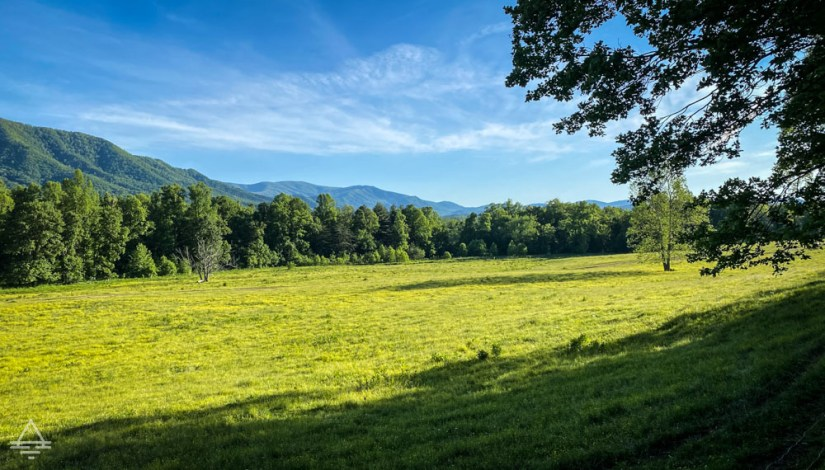 Green field surrounded by trees and mountains.