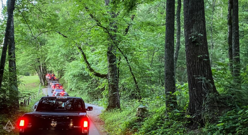 Cades Cove Loop Road with line of traffic.