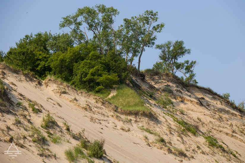 Indiana Dune with Trees and Grass on Top