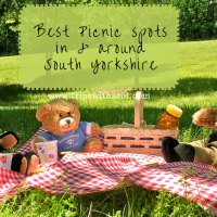 The best picnic spots in and around South Yorkshire | Top 12 places for picnics suitable for all year