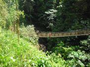 Long suspension bridge, Rainmaker