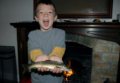 D with dinner brown trout