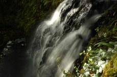 waterfall, Connemara NP