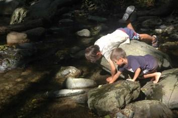 boys playing in stream2