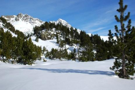 virgin snowfield