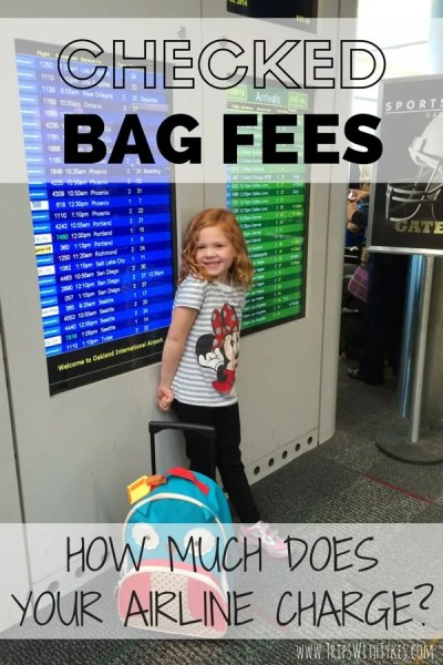 Checked Bag Fees Airline by Airline
