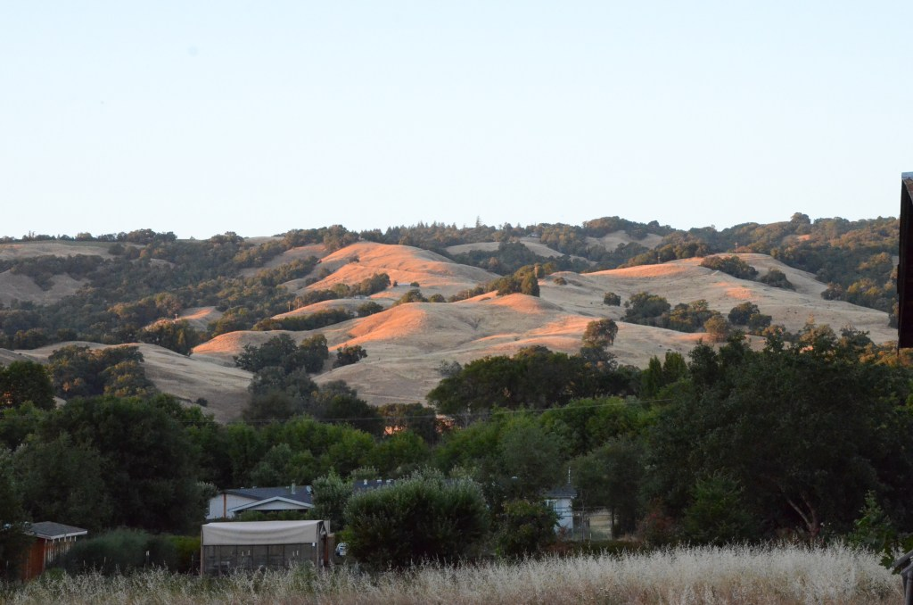 NorCal Road Trips: Mendocino County