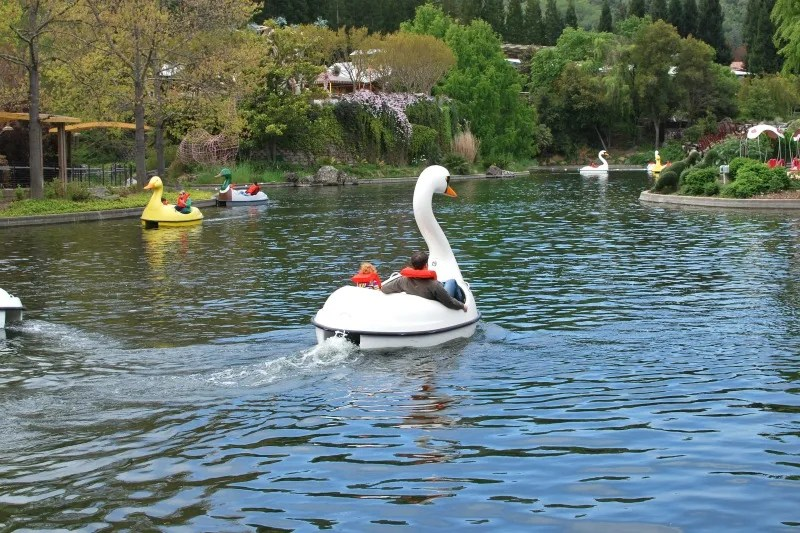 Gilroy Gardens Tips - Swan Boat Rides