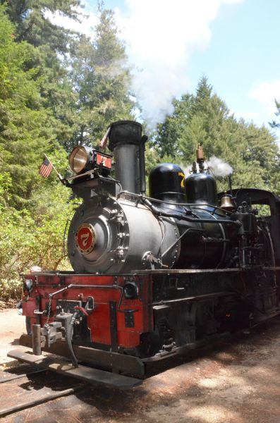 10 Kid-Friendly Day Trips Near San Francisco: Roaring Camp Railroad