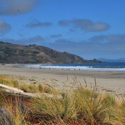10 Kid-Friendly Day Trips Near San Francisco: Stinson Beach