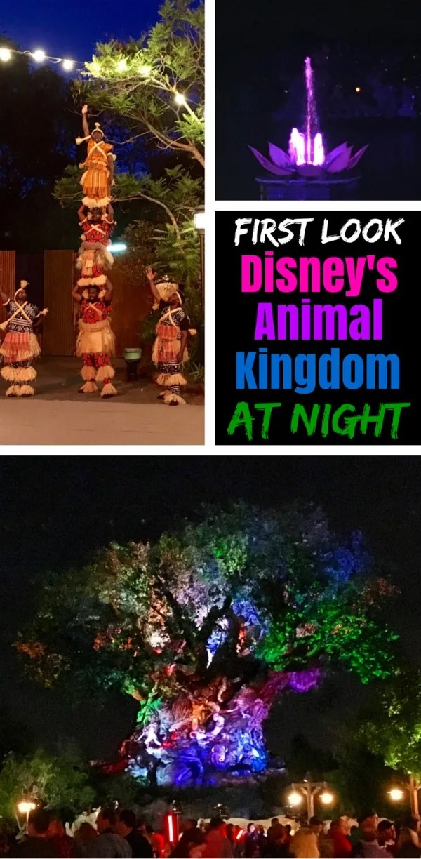 Disney's Animal Kingdom opens after sunset for the first time ever starting Memorial Day weekend 2016. Get a sneak peek at all the nighttime offerings - Rivers of Light, sunset safari, and more.