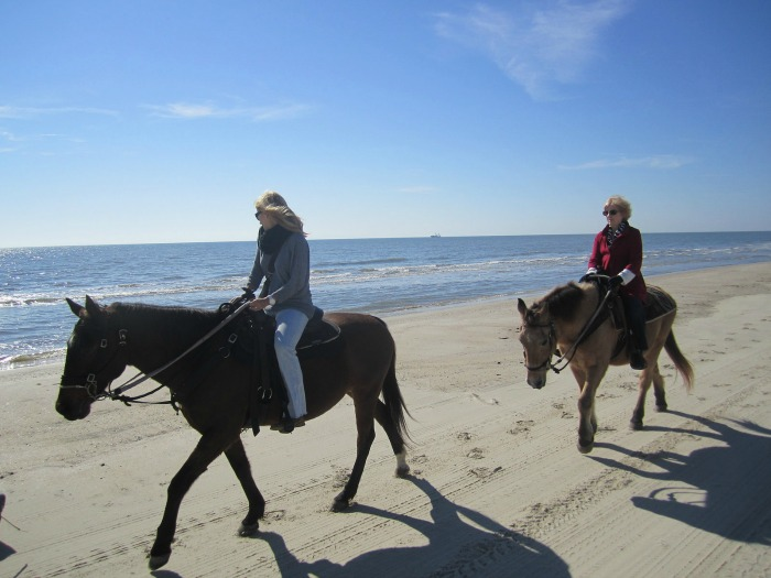Gulf County Florida Horseback Riding