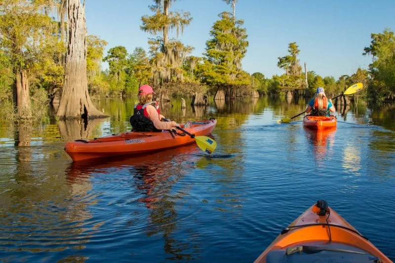 Gulf County Florida Kayaking